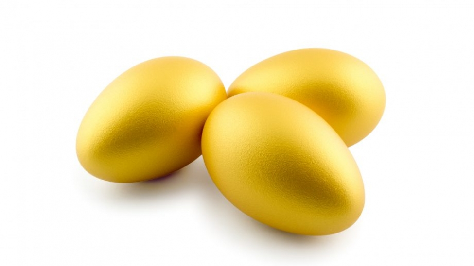 Geese and golden eggs Cover Image